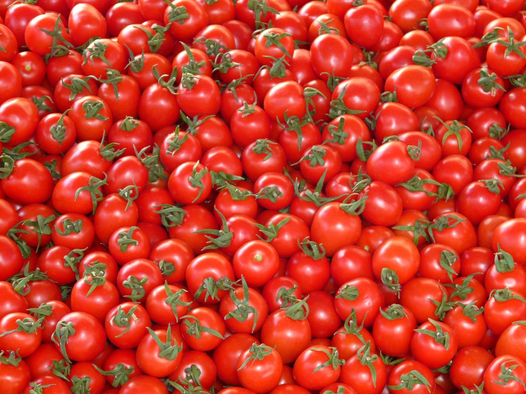 tomates beneficiosos para la salud