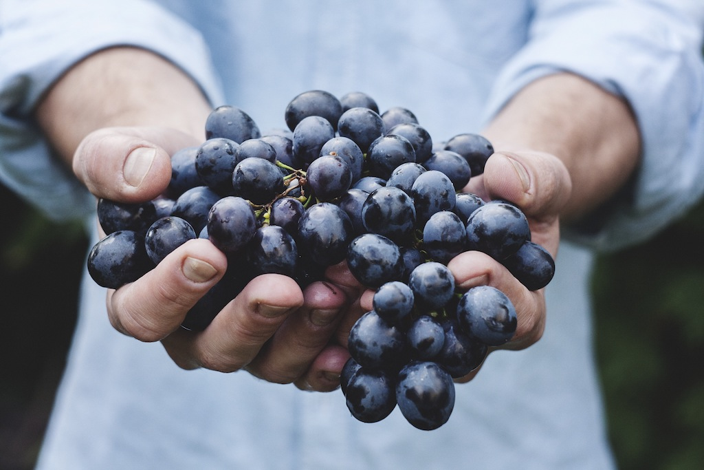 Uvas-Dieta-Mediterranea
